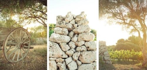 Bodegas Binifadet - elementos - packandwine